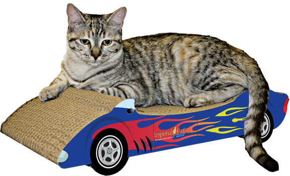 Racer Cat Scratching Pad - NEW!!!