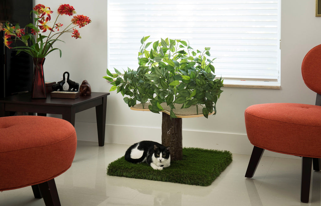 CatHaven™ Single Tier Cat Tree - Square Base - SPECIAL PRICE!