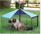 Kittywalk® Carousel