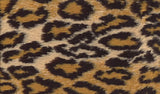 """WOOLIES"" Cat Fleece Beds - Medium Shown in Cheetah - Click to see several more designs"