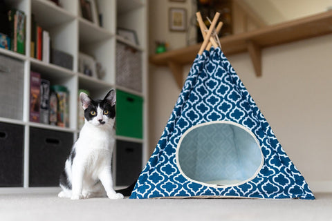 TeePee Playhouse and Hideaway - Moroccan Design!