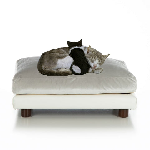 Soho Milo Cat Orthopedic Bed by Club Nine - NEW!!!