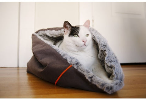 Snuggle Cat Bed