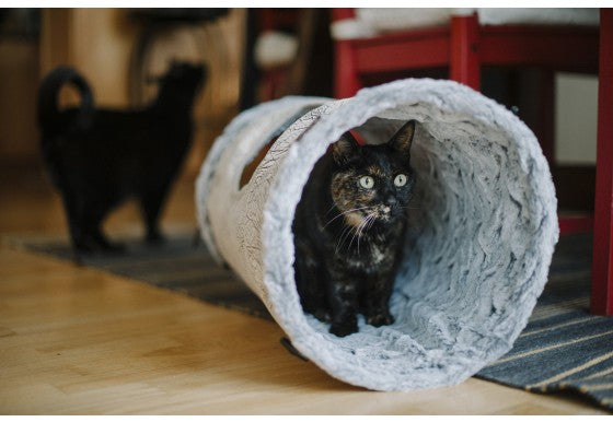 Purr & Pounce Cat Tunnel - NEW!!!