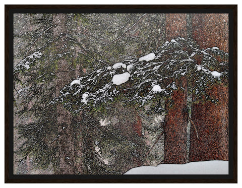 "Framed Canvas - ""Quiet Snow"" 18x24"