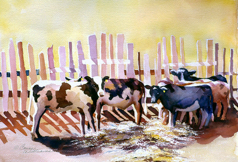 "Greeting Card - ""Fenced-in Cows"""
