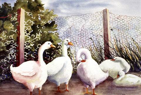 "Greeting Card - ""Fenced-in Quackers"""