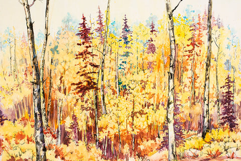 "Canvas Wrap - ""Aspen Splendor"" 16x24"