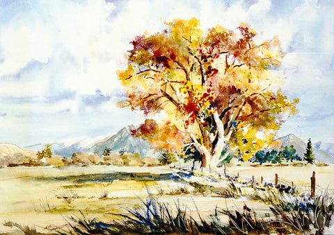 "Greeting Card - ""Golden Cottonwood"""