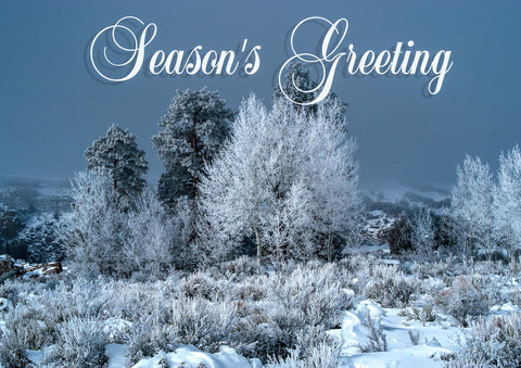 Holiday Card - Black Canyon Fairyland