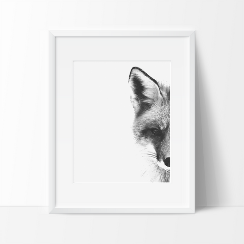 Up Close Fox Digital Sketch in Black and White, Wall Art, Modern Prints