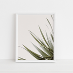 Minimalist Leaves Poster Wall Art