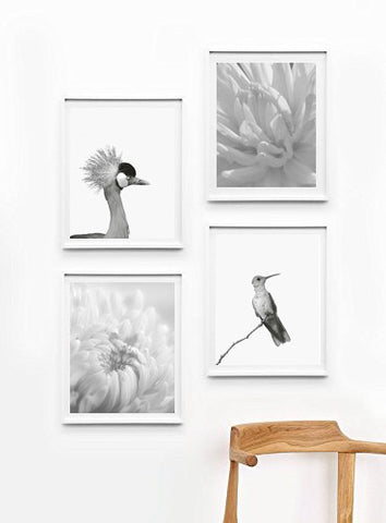 Art Poster Bird and Flower, Wall Decor Ideas, Unframed - Ink Print Art