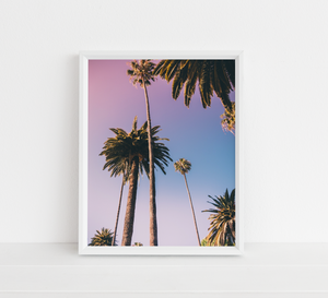 Formation Palm Tree Poster Art