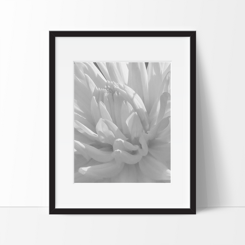 Nature Art, Flower Poster Print #2, Wall Decor Ideas, Unframed - Ink Print Art  - 1