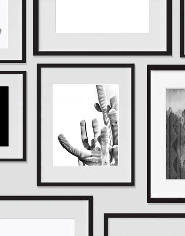cactus wall art desert black and white modern art prints ink