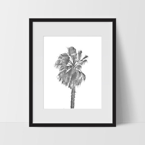 Palm Tree Wall Art, Hawaiian Tropical Black and White Modern Art, Prints - Ink Print Art  - 1