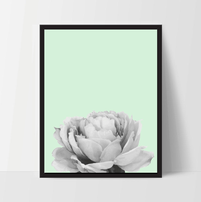 Printable, Mint Peony Flower, Wall Art, Artwork, Home Decor, Modern Print, Print Art, Nature Art, Living Room, Digital Print, 8x10, 12x16