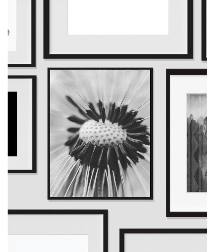 Printable Wall Art, Up Close Flower Photography, Wall Art, Artwork, Home Decor, Modern Print, Abstract Art, Black White, Digital Print