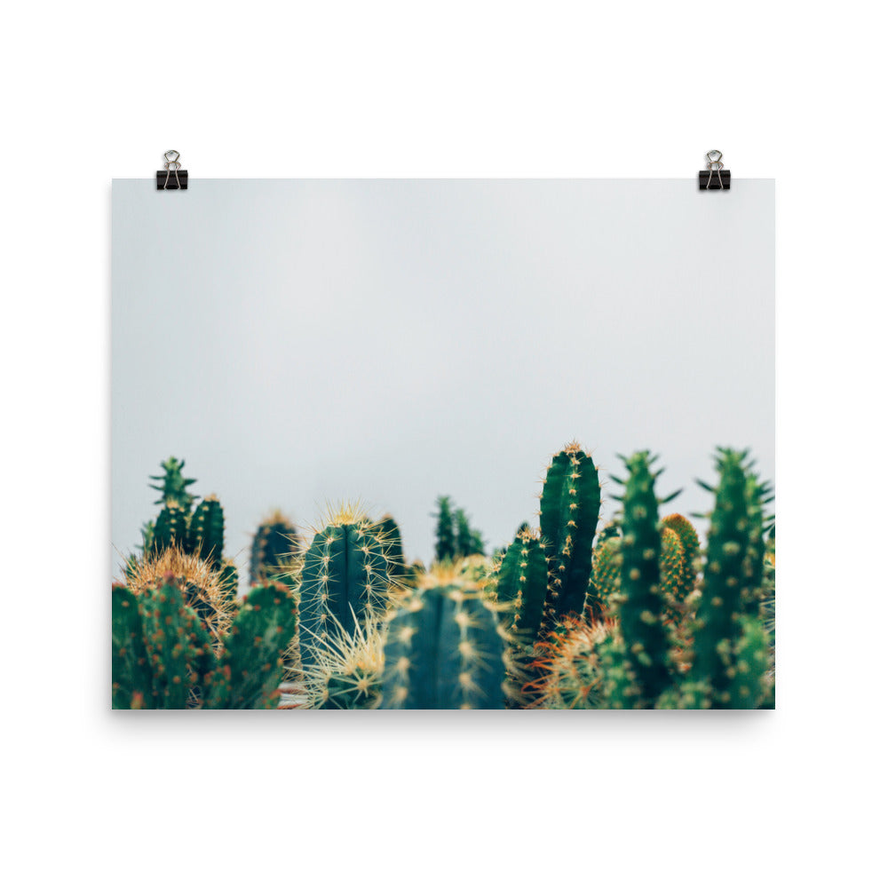 Geometric Transformed Cactus Poster