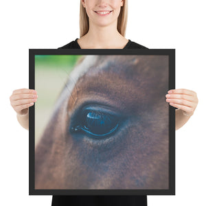 Perception in Purpose Horse Framed photo paper poster