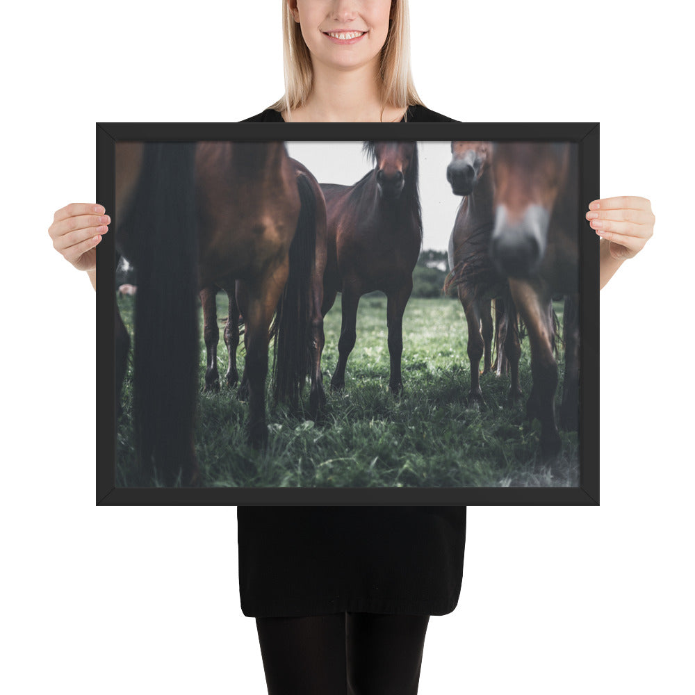 Rising Energy Horse Framed photo paper poster