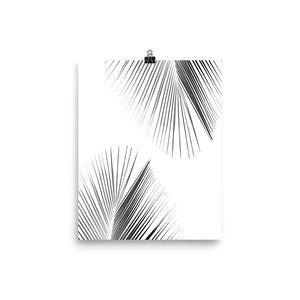 Tropical Leaf Palm Tree Poster