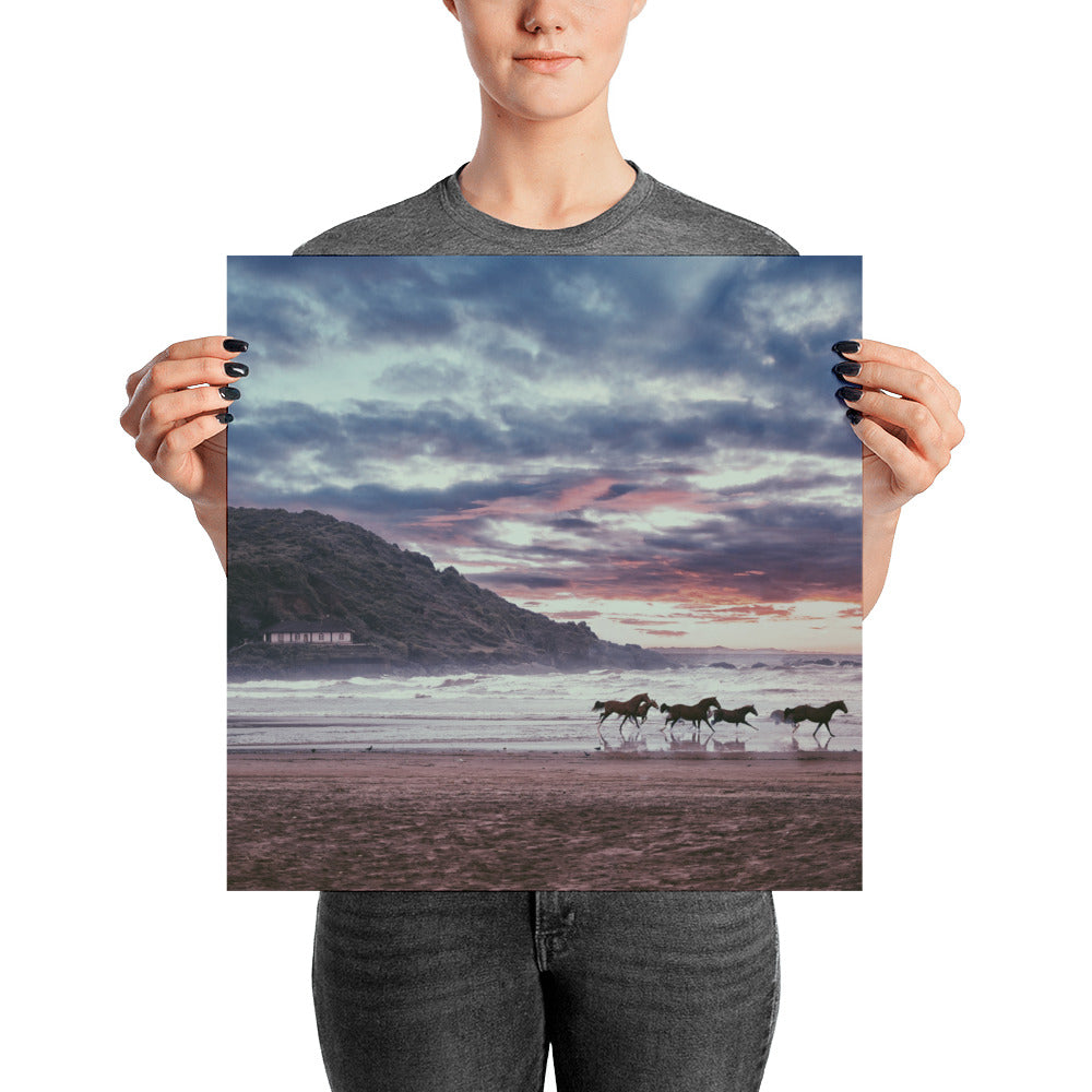 Space of Peace Horse Poster