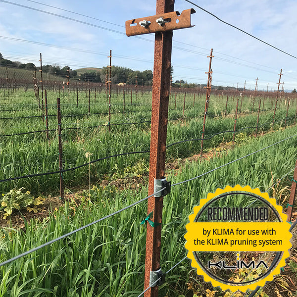 Retrofit solution for t-posts | Machine Pruning | Eco Sleeve