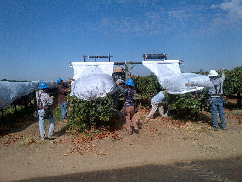 Installing vine cover in the field