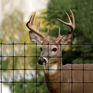 Deer Fence - Wholesale
