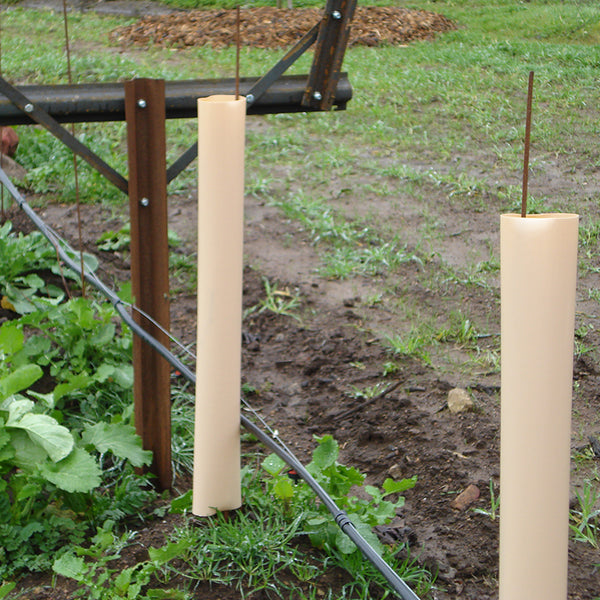 Grow Tubes & Vine Protection - Wholesale