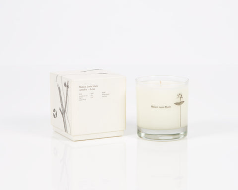 Maison Louis Marie Candle Antidris - Lime