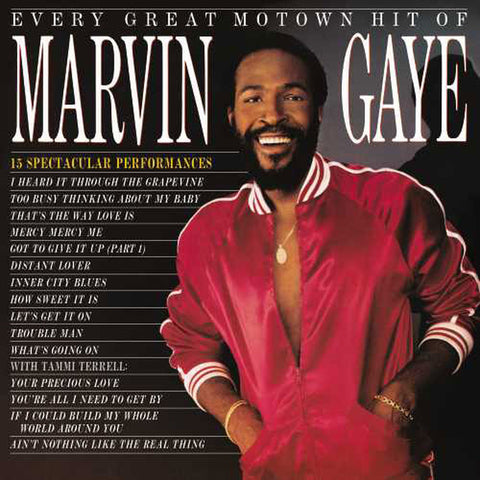 Marvin Gaye - Every Great Motown Hit Of Marvin Gaye: 15 Spectacular Performances Vinyl LP - direct audio