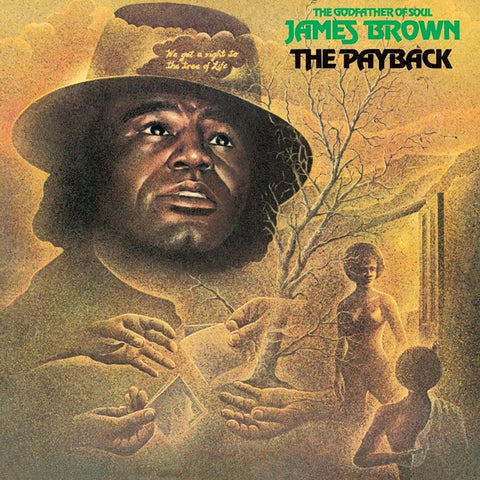 James Brown - The Payback on 2LP - direct audio