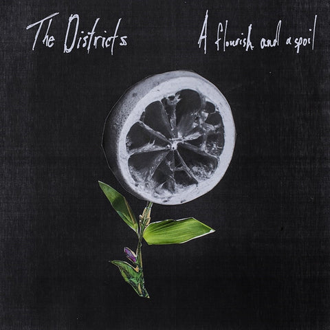 The Districts - A Flourish And A Spoil Vinyl LP + Download - direct audio