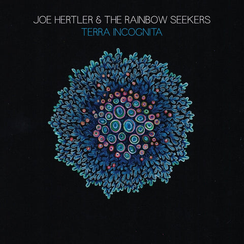 Joe Hertler And The Rainbow Seekers - Terra Incognita on LP - direct audio