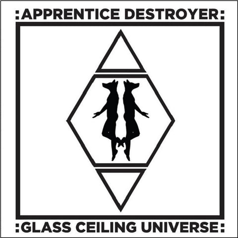 Apprentice Destroyer - Glass Ceiling Universe on LP - direct audio