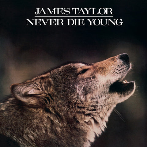 James Taylor - Never Die Young on Limited Edition 180g LP - direct audio