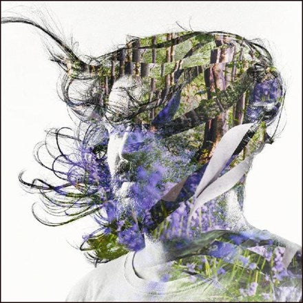 Bibio - Ribbons Vinyl LP - direct audio
