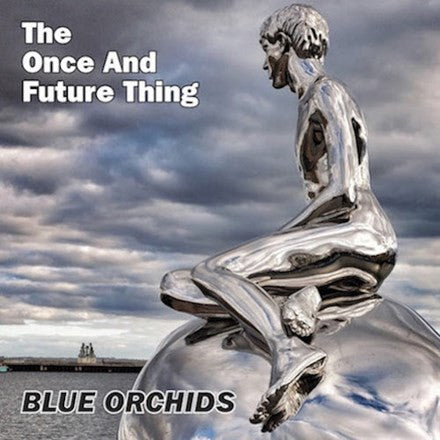 The Blue Orchids - The Once and Future Thing Vinyl LP - direct audio