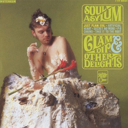 Soul Asylum - Clam Dip and Other Delights Vinyl LP - direct audio