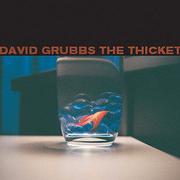 David Grubbs - The Thicket on LP Special Order - direct audio