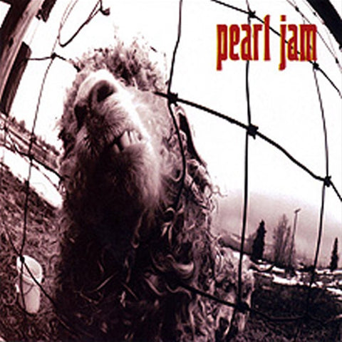 Pearl Jam - Vs. (Remastered) on 180g Vinyl LP - direct audio