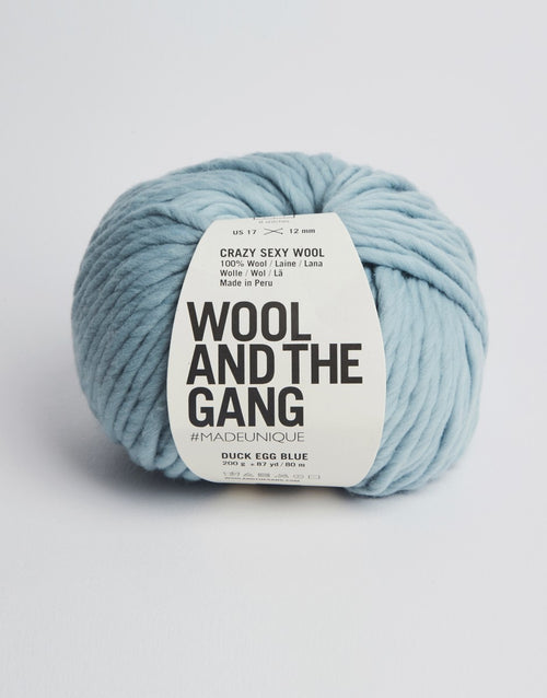 Wool and the Gang Crazy Sexy Wool Yarn in Duck Egg Blue - brewstitched.com