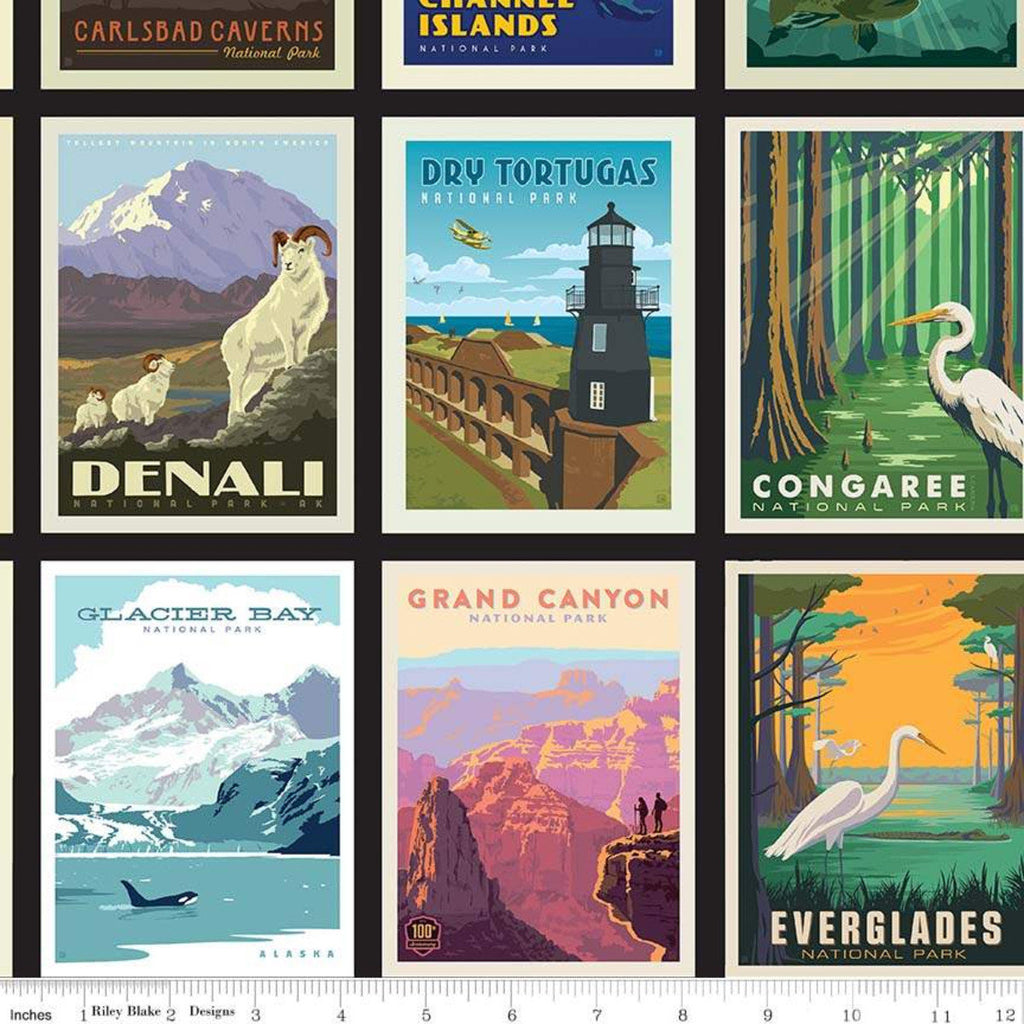 National Parks Fabric Posters Black - Priced by the Panel - brewstitched.com