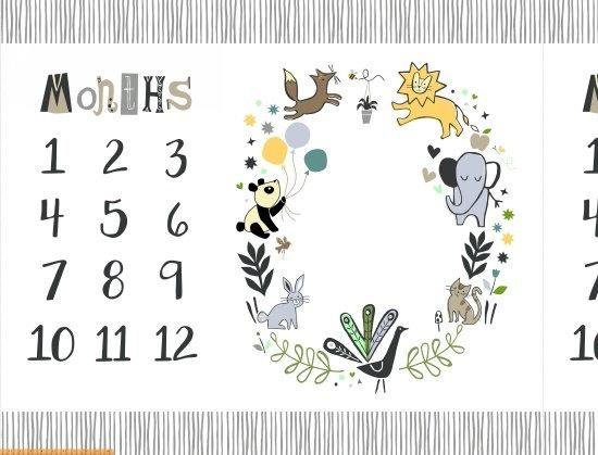 Dream Multi Baby Milestone Mat Digital Panel 54in x 42in - Price by the Panel - brewstitched.com