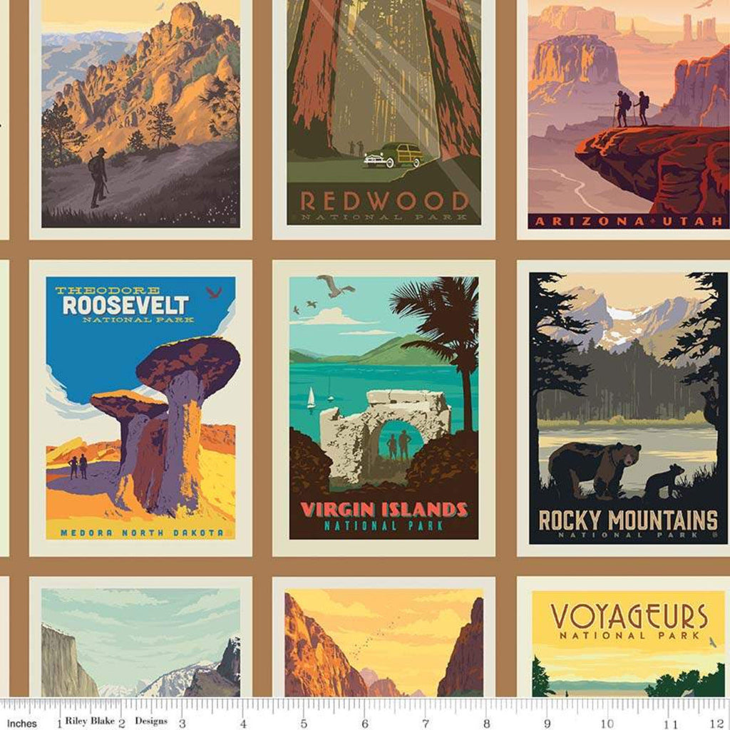 National Parks Fabric Posters Sand - Price by the Panel 24 x 44 - brewstitched.com