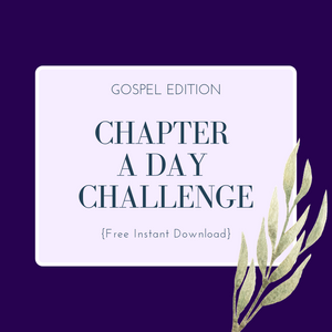 Chapter A Day Bible Challenge - Free Download