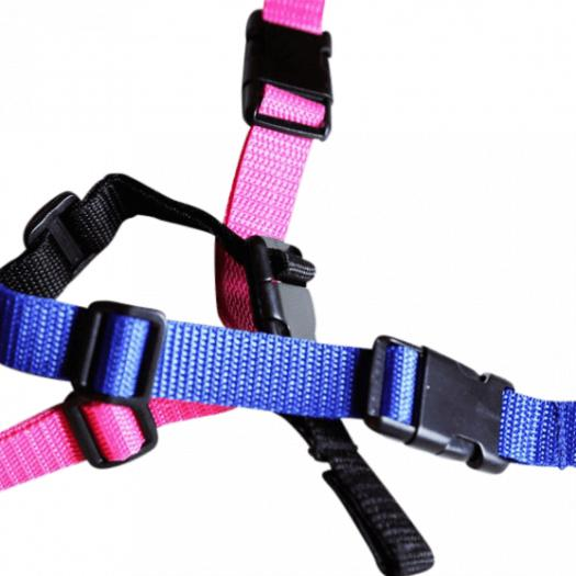 Goodlife - BarkWise™ Blue Collar Strap